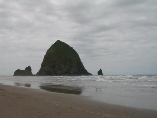 แคนนอนบีช, ออริกอน: haystack rock on cannon beach. oregon
