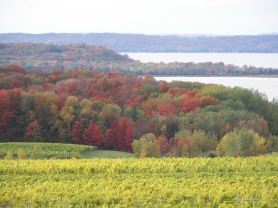 Chateau Grand Traverse Winery: Old Mission Peninsula