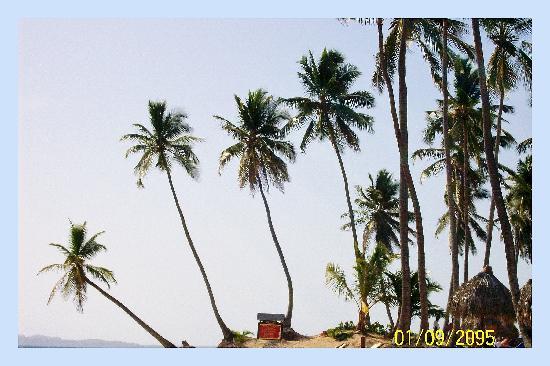 Dreams Punta Cana Resort & Spa: looks like a postcard