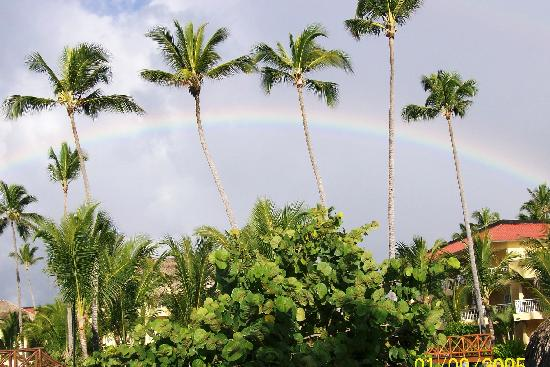 Dreams Punta Cana Resort & Spa: Rainbow