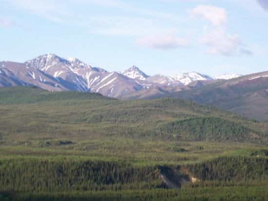 แฟร์แบงค์, อลาสกา: View in Alaska