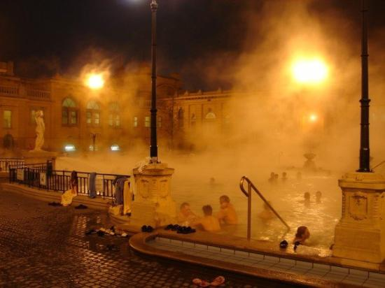 Széchenyi Baths and Pool: The thermal baths