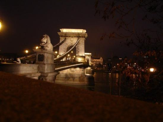 สะพานโซ่: The bridge