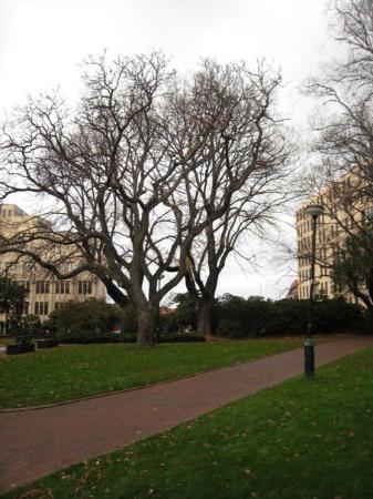 โฮบาร์ต, ออสเตรเลีย: Franklin Square