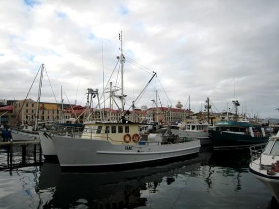 โฮบาร์ต, ออสเตรเลีย: Victoria Dock