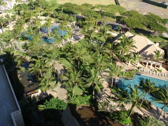 โออาฮู, ฮาวาย: This was take n by me up on the 14th or 15th floor.  It shows the 2 blue bottom pools and at the
