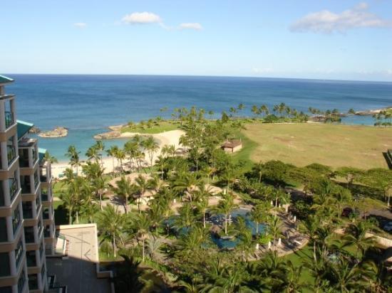 โออาฮู, ฮาวาย: Shows one of the blue pools stretching out to the shore!  Walking path goes to the right along t