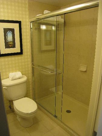 shower door was leaky picture of hilton garden inn. Black Bedroom Furniture Sets. Home Design Ideas