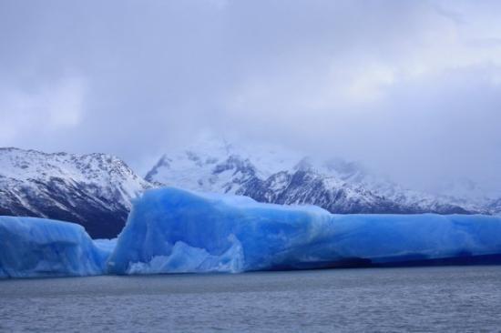 เอลคาลาเฟต, อาร์เจนตินา: ... au milieu des icebergs