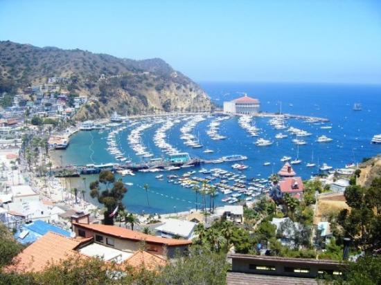 แอวาลอน, แคลิฟอร์เนีย: Avalon, Catalina Island