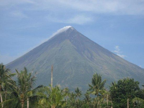 Manila Picture