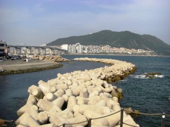 ปูซาน, เกาหลีใต้: Busan Port Beach Area