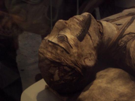 บริติชมิวเซียม: Creepy Mummy