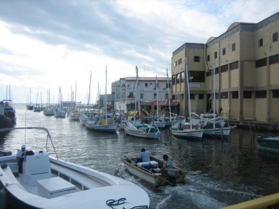 เบลีซซิตี, เบลีซ: The Marina in Belize City.