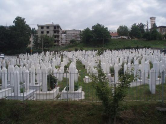 ซาราเจโว, บอสเนียและเฮอร์เซโกวีนา: Veldig trist å se at halve byen er en gravplass...