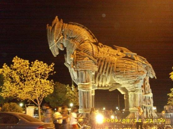 Canakkale, ตุรกี: The actual Trojan horse used in the Troy movie (w Brad Pitt).