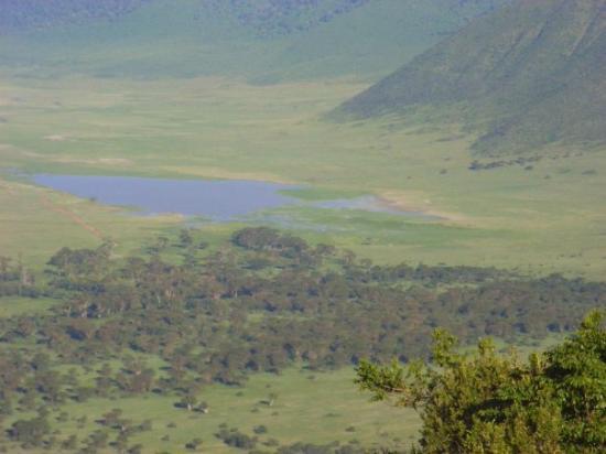 Ngorongoro Conservation Area, แทนซาเนีย: View from balcony, Serena Hotel, Ngorongoro, Tanzania Apr 08