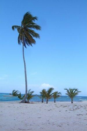 La Romana, Dominican Republic: Isla de Saona