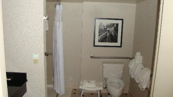 Crowne Plaza Hotel Kansas City Downtown: Bathroom