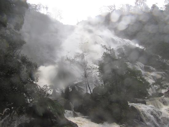 Tasmanien, Australien: Waterfall mist on the lens - St Columba Falls