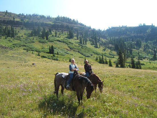 Cornucopia Lodge : On the trail ride