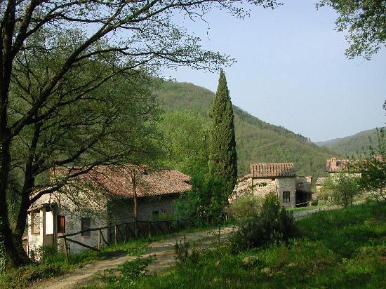 Agriturismo Il Castagnolo: Foto borgo