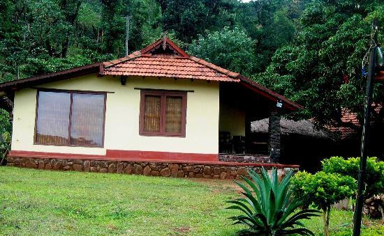 Wayanad District, India: bigger one is the bath room window...you can enjot watching the deep green while taking shower
