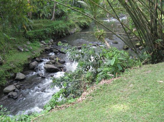 Four Seasons Resort Bali at Sayan: A pie de nuestra villa