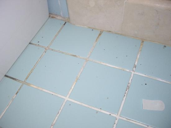 Melas Resort Hotel: mouldy bathroom floor