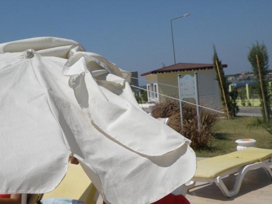 Palm Wings Beach Resort: legerement dangereux.....;