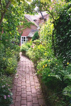 Lane Cottages: Garden walk
