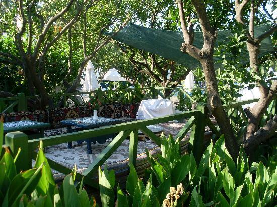 Labranda TMT Bodrum Resort: 5