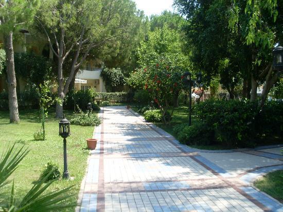 Labranda TMT Bodrum Resort: 8