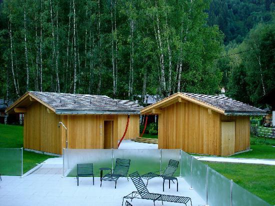 Le Refuge des Aiglons: Saunas