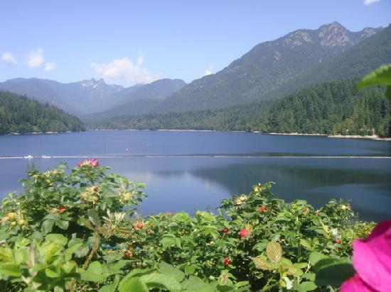 อุทยานและสะพานแขวนคาปิลาโน: You need to walk 1 mile downhill to Capilano lake