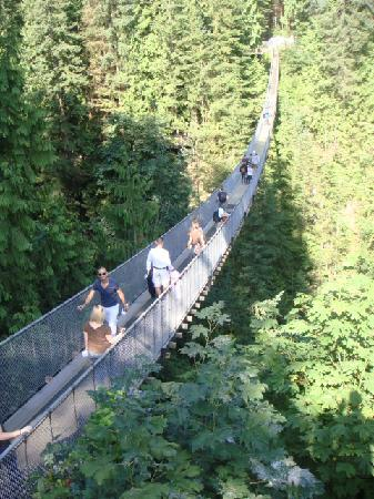 อุทยานและสะพานแขวนคาปิลาโน: The bridge itself