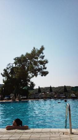 Montana Pine Resort: Marmaris Pool