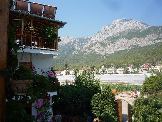 Hotel Beydagi Konak: View from balcony