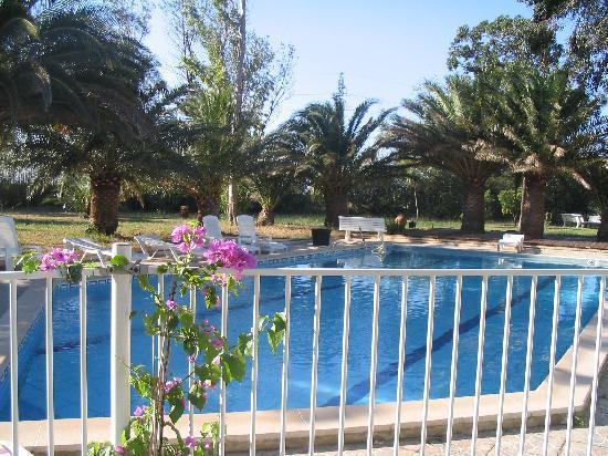 Le Tropic Hotel: vue de la piscine