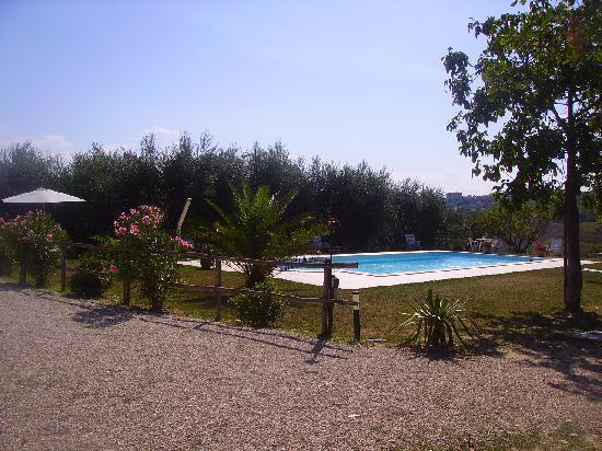 Agriturismo La Coccinella: piscina