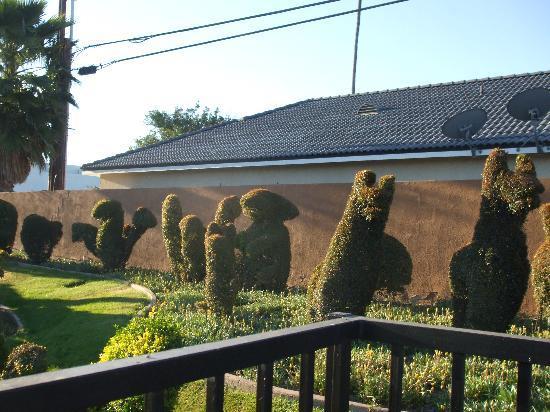 Best Western Plus Stovall's Inn: The Garden