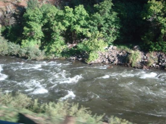 เดนเวอร์, โคโลราโด: A running creek in the mountains.