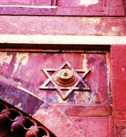 Fatehpur Sikri, อินเดีย: David star with lotus