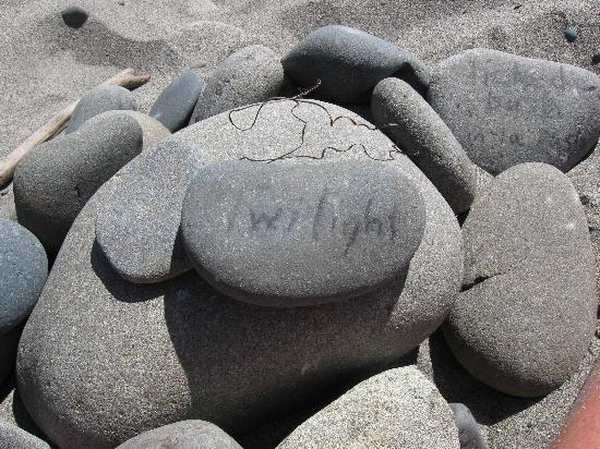 Quileute Oceanside Resort: found this on the beach ;)