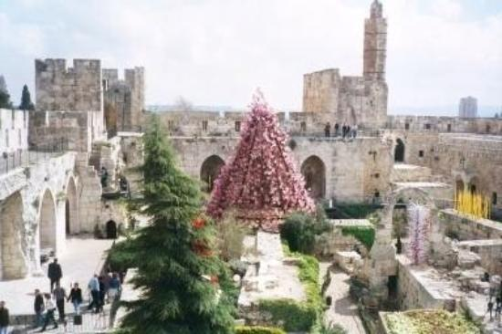 Old City of Jerusalem: Chihuly Exhibit in the Old City