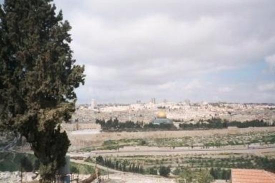 เขามะกอกเทศ: From the Mt of Olives