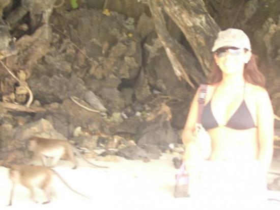 เกาะพีพีดอน, ไทย: En la Isla de los Monos