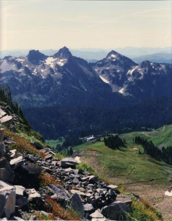 Paradise Lodge Mt Rainier Washington Picture Of