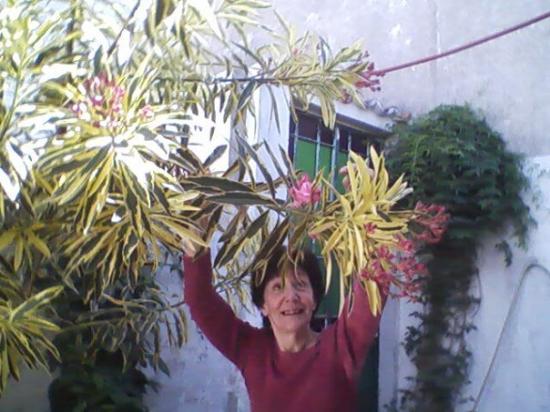 Vicente Lopez, อาร์เจนตินา: Mami con mis flores...Noritaaaaaa!
