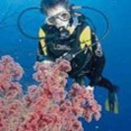 Badolato, อิตาลี: Diving on the IOnian sea